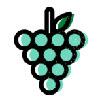 Wine grapes - Divine Loire - The reference website for Loire Valley wines