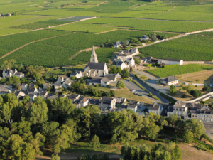 "Souzay Champigny, ""capital"" of the Saumur Champigny appellation (7 km south-east of Saumur)"